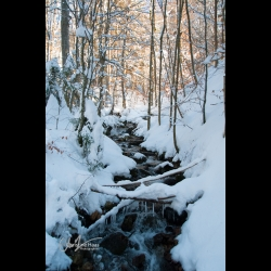 Frozen stream